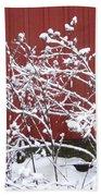 Snow On Burdock Burr Weed Against Red Barn Siding Bath Towel