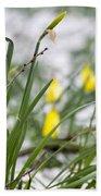 Snowy Daffodils Bath Towel