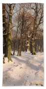 Snowy Forest Road 1908 Bath Towel