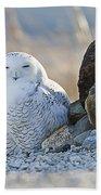 Snowy Owl Among The Rocks Bath Towel