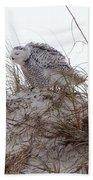Snowy Owl In Florida 13 Bath Towel