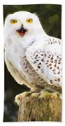 Snowy Owl Bath Towel