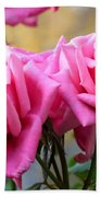Soft Pink Roses Bath Towel
