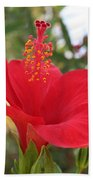 Soft Red Hibiscus With A Natural Garden Background Bath Towel