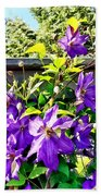 Solina Clematis On Fence Bath Towel