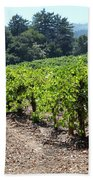 Sonoma Vineyards In The Sonoma California Wine Country 5d24512 Bath Towel