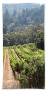Sonoma Vineyards In The Sonoma California Wine Country 5d24518 Bath Towel