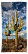 Sonoran Desert Beauty Bath Towel