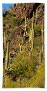 Sonoran Desert West Saguaro National Park Bath Towel