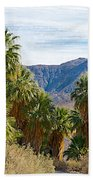 South Side View Of Andreas Canyon Trail In Indian Canyons-ca Bath Towel