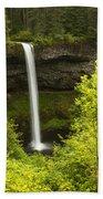 South Silver Falls 1 Bath Towel