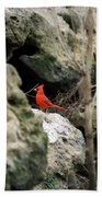 Southern Red Bird By The Flint River Bath Towel