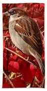 Sparrow Bath Towel