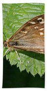 Speckled Wood Butterfly Bath Towel