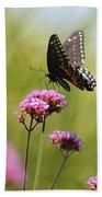 Spicebush Swallowtail Butterfly In Meadow Bath Towel