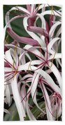 Spider Lily Bath Towel