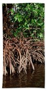 Spider Mangroves Oro Bay Bath Towel
