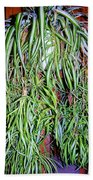 Spider Plant Bath Towel