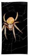 Spider Bath Towel