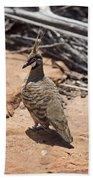 Spinifex Pigeon V3 Bath Towel