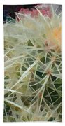 Spiny Barrel Cactus Bath Towel