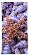 Spiral Shells And Starfish Bath Towel