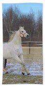 Spirited Horse Bath Towel