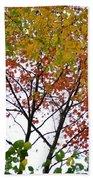 Splash Of Autumn Colors Bath Towel