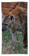 Spotted Hyena Bath Towel