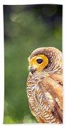 Spotted Owl Bath Towel