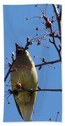 Spring Bird Singing Bath Towel