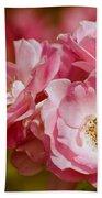 Spring Roses Bath Towel