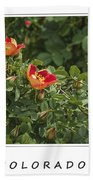 Spring Blooms In Colorado Bath Towel