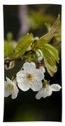 Spring Blossom Bath Towel
