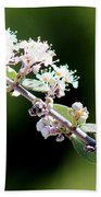 Spring Blossoms White 031015aa Bath Towel