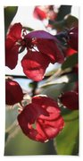 Spring Crabapple Blossom Bath Towel