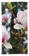 Spring Magnolia Tree Flowers Pink White Bath Towel