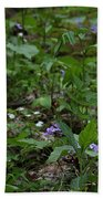 Spring Wildflowers Along Panther Branch Trail Frozen Head Tennessee State Park Tennessee Bath Towel