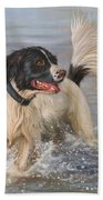 Springer Spaniel Bath Towel