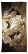 Springtime Blossoms Bath Towel