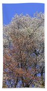 Springtime In Great Balsam Mountains Bath Towel