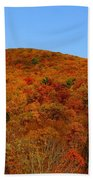 Sproul State Forest Bath Towel