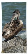 Sprucing Pelican Bath Towel