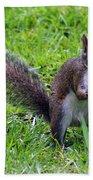 Squirrel Eats Mushroom Bath Towel
