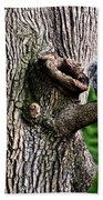Squirrel Guarding Watering Knot Hand Towel