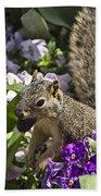 Squirrel In The Botanic Garden-dallas Arboretum V2 Bath Towel