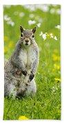 Squirrel Patrol Bath Towel