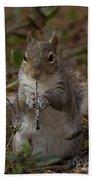 Squirrel With His Obo Bath Towel