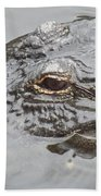 Stalker 2 Bath Towel
