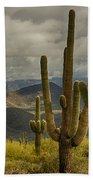 Standing Tall In The Sonoran Desert  Bath Towel